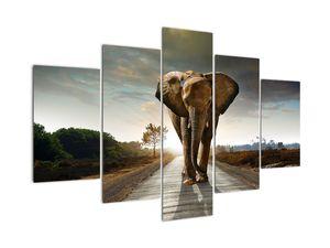 Elefánt képe (V022219V150105)