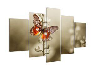 Pillangó képe (V022227V150105)