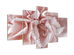 Obraz - Detail kvetu (V022271V150105)