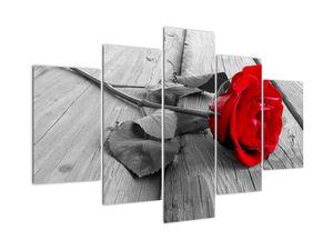 Slika rdeče vrtnice (V022288V150105)