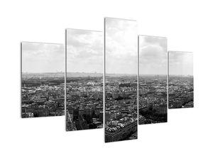 Obraz - Střechy domů v Paříži (V022613V150105)