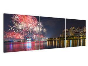 Tablou cu artificii in Singapur (V020035V15050)