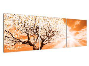Oranžový obraz stromu (V020095V15050)