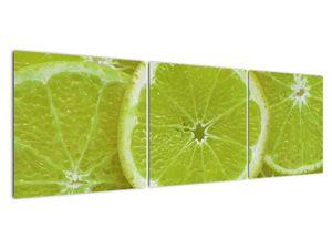 Kép - citrom szelet (V020164V15050)