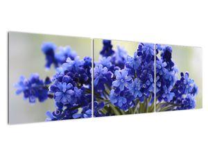 Obraz kytice modrých květů (V020175V15050)