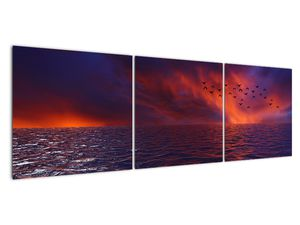 Obraz moře s ptáky (V020351V15050)