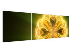 Obraz žluté květiny (V020451V15050)