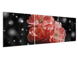 Obraz růžové květiny (V020471V15050)