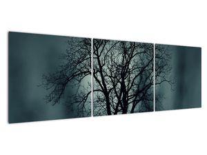 Obraz stromu v zatmění (V020675V15050)