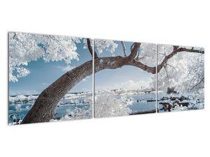 Obraz zasněženého stromu u vody (V020718V15050)