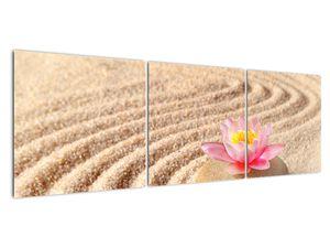 Obraz kameňa s kvetinou na piesku (V020864V15050)