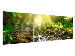 Obraz řeky v zeleném lese (V020942V15050)