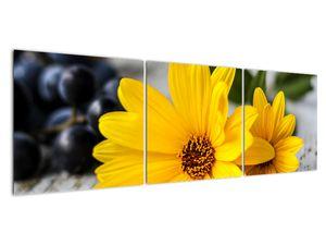 Obraz žluté květiny (V020952V15050)