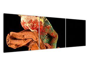 Obraz chameleona na větvi (V021125V15050)