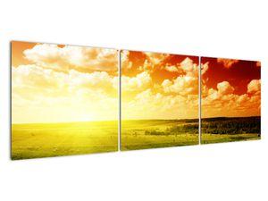 Obraz louky se zářícím sluncem (V021174V15050)