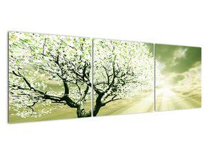 Obraz stromu na lúke (V021282V15050)