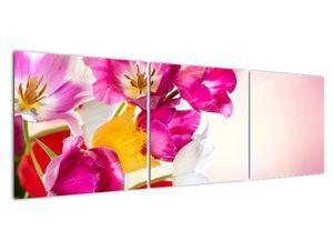 Obraz tulipánov (V021295V15050)
