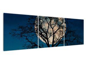 Obaz stromu s úplňkem (V021355V15050)