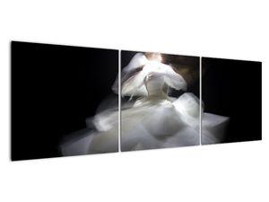 Lótuszvirág képe (V021597V15050)