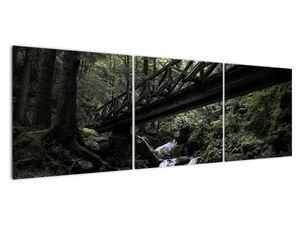 Obraz z černého lesa (V021686V15050)