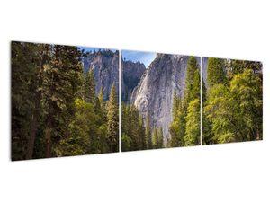 Kép - A Yosemite szikla alatt (V021691V15050)