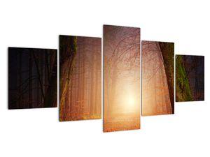 Obraz podzimního lesa v mlze (V020013V150805PCS)