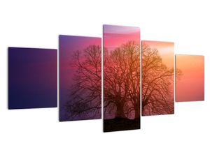 Obraz stromů v mlze (V020088V150805PCS)