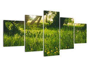 Obraz přírody - louka (V020157V150805PCS)