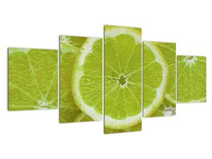 Obraz - citróny na řezu (V020164V150805PCS)
