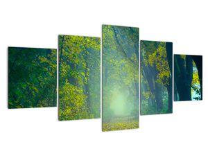 Obraz cesty lemované stromy (V020165V150805PCS)
