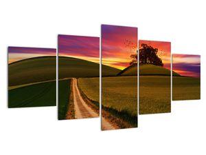 Obraz pole se západem slunce (V020166V150805PCS)