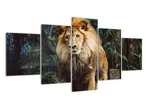 Obraz lva v přírodě (V020176V150805PCS)