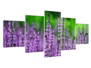 Obraz fialového lučního kvítí (V020193V150805PCS)