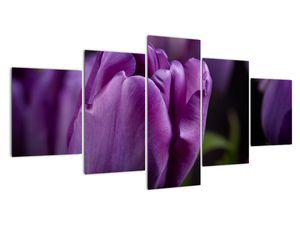 Tablou cu flori de lalele (V020215V150805PCS)