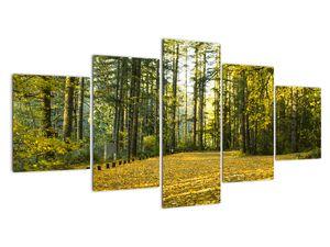 Tablou - pădurea toamna (V020218V150805PCS)