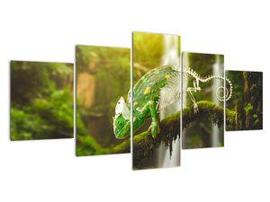 Obraz chameleona (V020277V150805PCS)