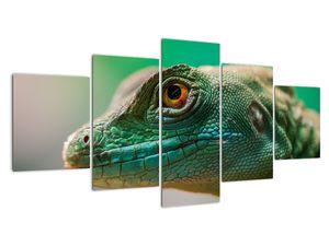 Detailní obraz ještěra (V020321V150805PCS)