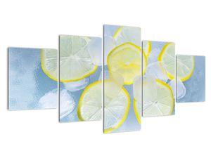 Obraz citrónů v ledu (V020358V150805PCS)