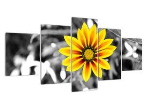 Obraz žluté květiny (V020361V150805PCS)