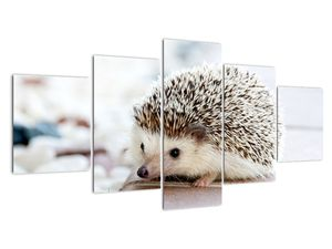 Obraz ježka (V020368V150805PCS)