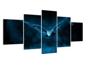 Obraz letící sovy (V020478V150805PCS)