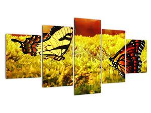 Obraz motýlů (V020481V150805PCS)