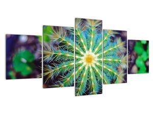 Obraz kaktusu (V020556V150805PCS)