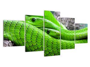 Obraz zelených hadů (V020689V150805PCS)