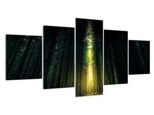Obraz temného lesa (V020705V150805PCS)