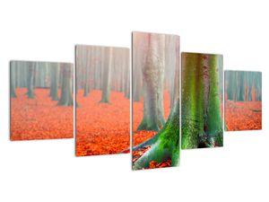 Obraz stromů (V020708V150805PCS)