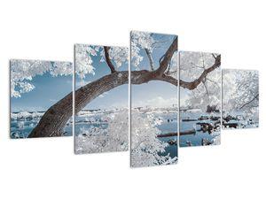 Obraz zasněženého stromu u vody (V020718V150805PCS)
