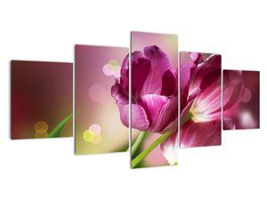 Obraz růžových tulipánů (V020887V150805PCS)