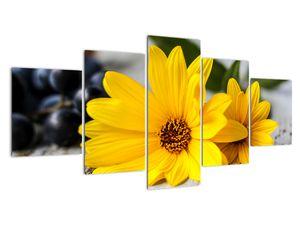 Obraz žluté květiny (V020952V150805PCS)