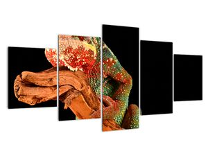 Obraz chameleona na větvi (V021125V150805PCS)